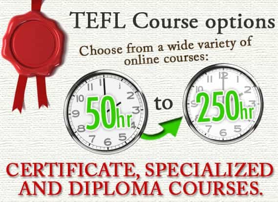 what subjects will you be taking in college for a teaching degree cheaper on line
